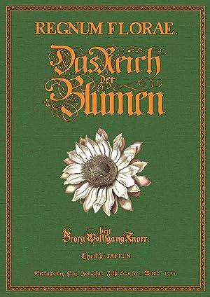 Regnum Florae oder das Reich der Blumen Tafeln: Knorr, Georg Wolfgang