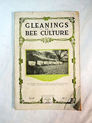 Gleanings in Bee Culture, November 1926