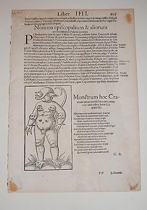 Monster of Cracow. Single leaf from Cosmographia: Munster, Sebastian.