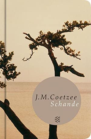 Schande: J. M. Coetzee