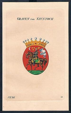 Grafen von Szunyoch Wappen Kupferstich Genealogie Heraldik coat of arms