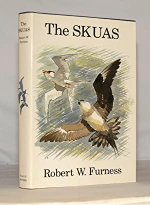 The Skuas.