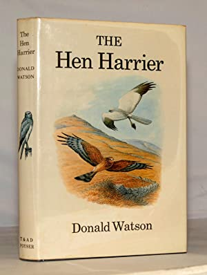 The Hen Harrier.