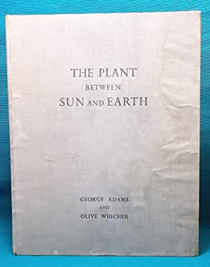 The Plant between Sun and Earth