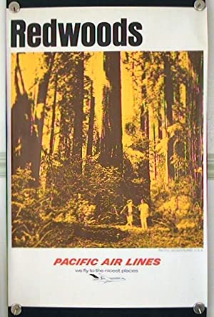 Redwoods. Pacific Wonderland U.S.A. Pacific Air Lines - we fly the nicest places.