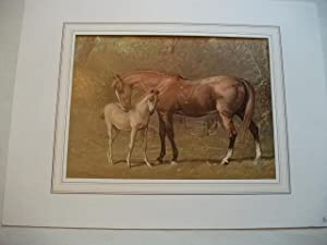 Thoroughbred mare & foal.: Corbould, Alfred