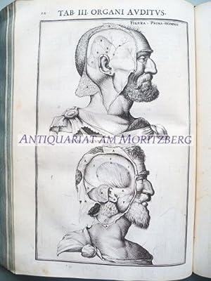 De Vocis Avditvso Organis Historia Anatomica Singulari: Casserius, Julius:
