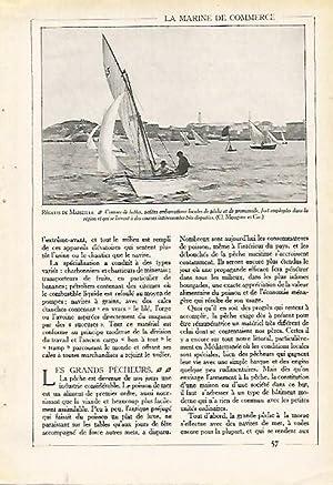 Imagen del vendedor de LAMINA 3918: REGATAS EN MARSELLA a la venta por EL BOLETIN