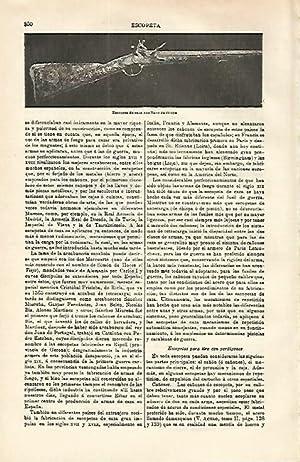 LAMINA ESPASA 16592: Escopeta de caza con: Varios