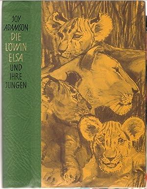 """Die Löwin Elsa und ihre Jungen / eine Nachfolge von """"Frei geboren"""" eine Löwin in zwei ..."""