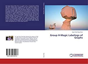 Group H-Magic Labelings of Graphs: Syed Tahir Raza Rizvi