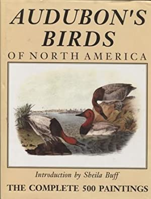 Audubon's Birds of North America
