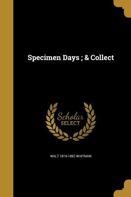 Specimen Days; & Collect (Paperback or Softback): Whitman, Walt
