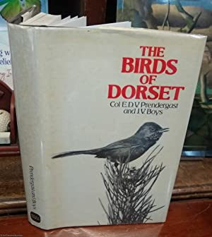 The Birds Of Dorset