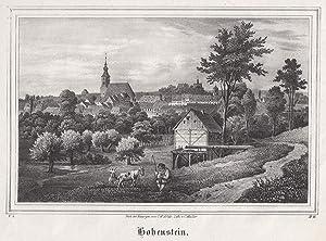 Gesamtans.: Hohenstein - Ernstthal: