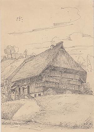 TA., großes Bauernhaus am Hang.: Gutachtal: Gutach:
