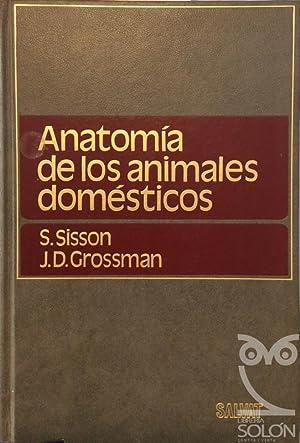 Anatomía de los animales domésticos: Septimus Sisson /
