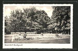Ansichtskarte Sorau / Zary, Stadtparkpartie