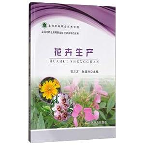 Flower production(Chinese Edition): SHI WAN FANG