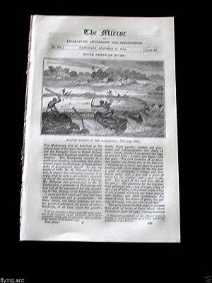 The Mirror of Literature, Amusement and Instruction.1834: J. Limbird