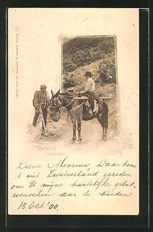 Ansichtskarte Muletier valasan, Maultier mit Reiter