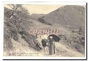 Environs du Mont Dore Carte Postale Ancienne
