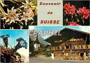 Carte Postale Moderne Suisses souvenir