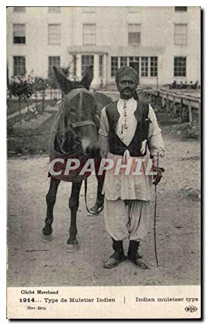 Inde - India - Type de Muletier
