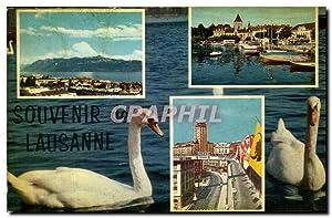 Carte Postale Ancienne Souvenir de Lausanne Cygnes