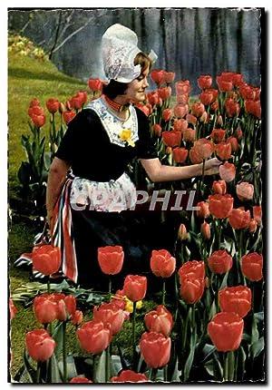 Carte Postale Moderne Holland in Bloementooi Tulipes