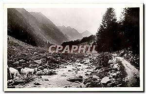 Carte Postale Semi Moderne Hautes Pyrnees Cauterets
