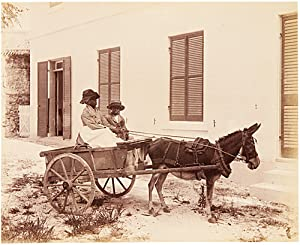 [ALBUM OF THIRTY-ONE ALBUMEN PHOTOGRAPHS SHOWING SCENES IN BERMUDA AND ELSEWHERE]