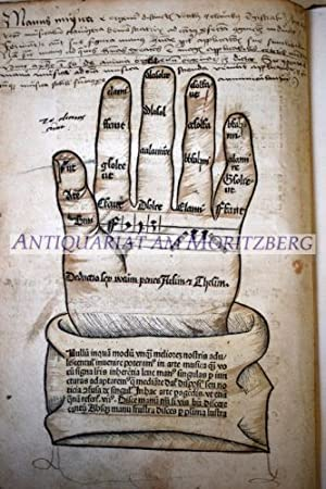 Opus Aureum. Musice castigatissimum de Gregoriana et: Musik - (Wollick