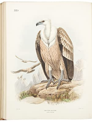A History of the Birds of Europe,: DRESSER, Henry Eeles