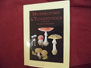 Mushrooms & Toadstools. An Illustrated Guide.: Baier, Jiri.
