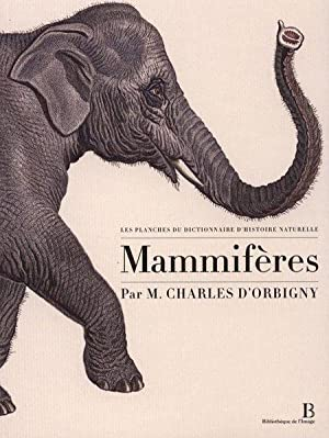Les planches du Dictionnaire d'Histoire Naturelle -: Charles d'Orbigny