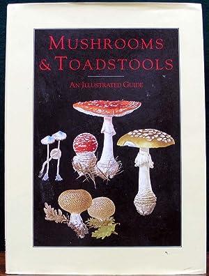 MUSHROOMS & TOADSTOOLS. An illustrated guide. Text: BAIER, Jiri.