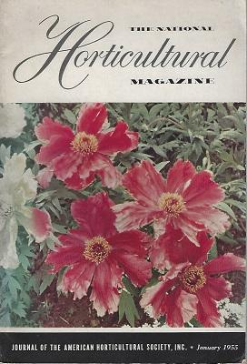 The Tree Peonies (The National Horticultural Magazine. January 1955)