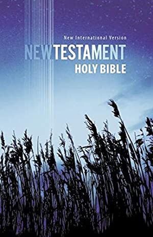 Holy Bible: New International Version, Outreach New: Zondervan