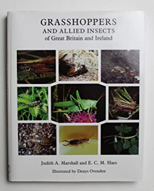 Grasshoppers and Allied Insects of Great Britain: Marshall, Judith; Haes,