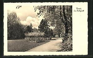 Ansichtskarte Sorau / Zary, Partie im Stadtpark