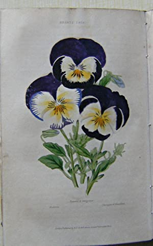 The Flower Garden - containing directions for the cultivation of all garden flowers: with selecte...