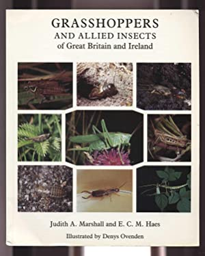 Grasshoppers and Allied Insects of Great Britain: Marshall, Judith A