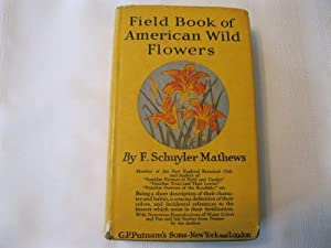 Field Book of American Wild Flowers Being: Mathews, F. Schuyler