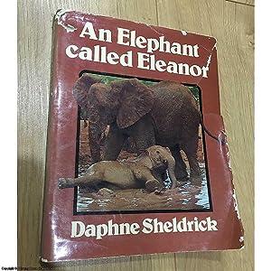 An Elephant Called Eleanor: Sheldrick, Dame Daphne