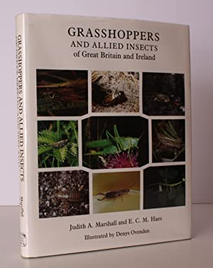 Grasshoppers and Allied Insects of Great Britain: MARSHALL and E