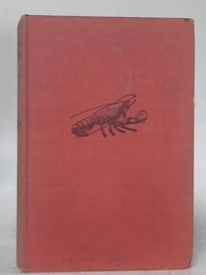 The Curious Lobster's Island: Richard Warren Hatch