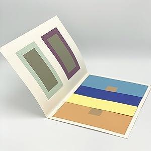 Josef Albers Interaction Of Color Abebooks