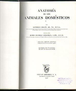 ANATOMIA DE LOS ANIMALES DOMESTICOS.: SISSON, Septimus.