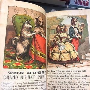 WONDERFUL ANIMALS, COMPRISING KING DONKEY'S DOINGS, DOGS': Cogger, Edward P;